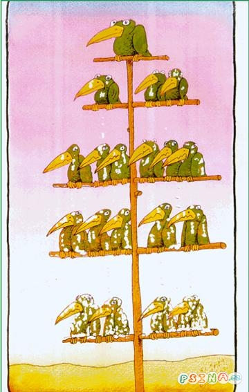 jak-funguje-hierarchie.jpg