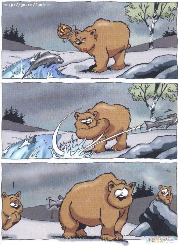 nastvanej-medved-chyta-potravu.jpg