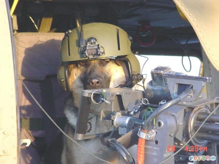 drsnej-pilot-u-dela.jpg