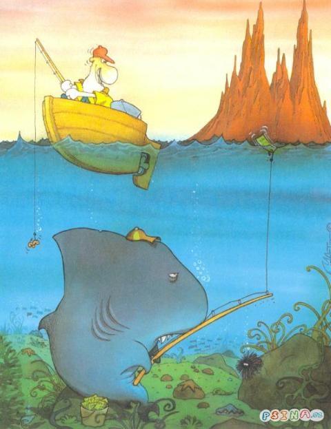 Zralok Lovi Rybare Kreslene Obrazky Obrazky
