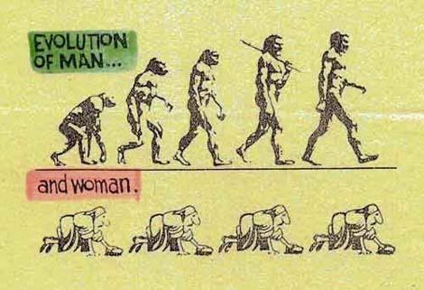 evoluce-2.jpg